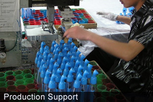 Raytech Corporation Production Support